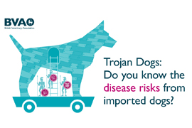 Trojan dogs - do you know the risks