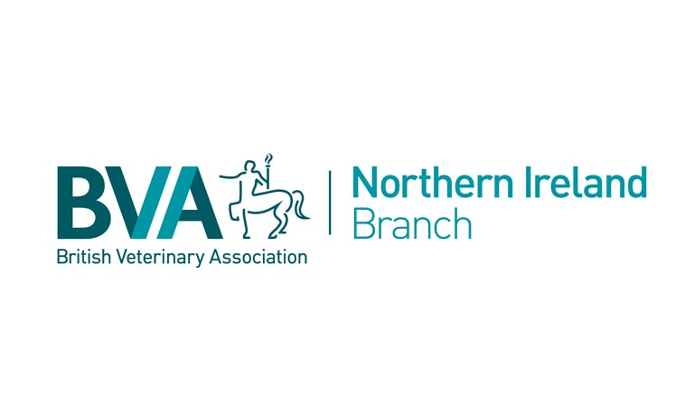 British Veterinary Association praises NI vets for being strong and supportive ahead of Brexit Image