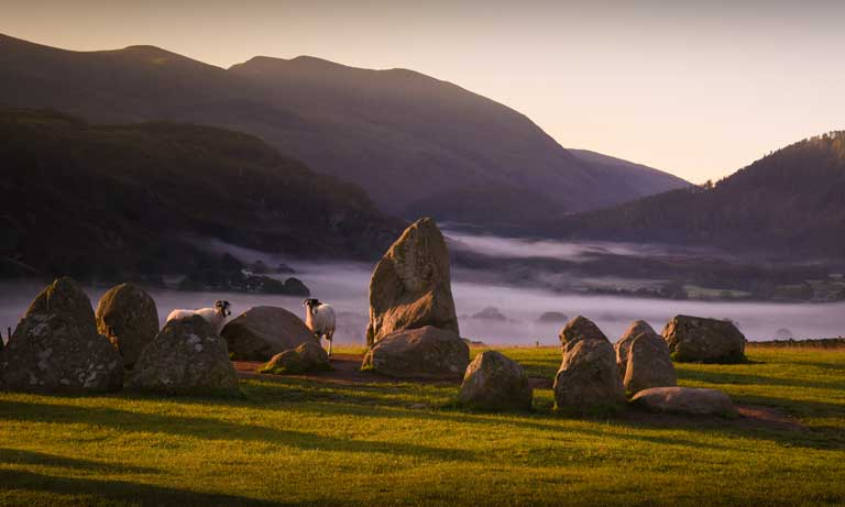 One Health in Action report Image