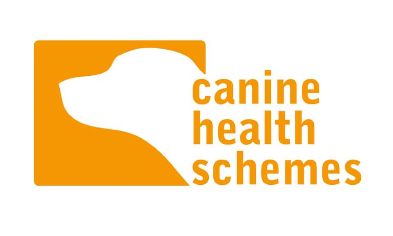 Dog health screening schemes  Image