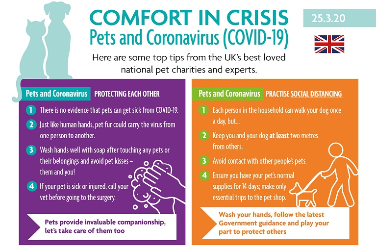 Comfort in crisis: Leading animal organisations unite to support pets and owners through Coronavirus (COVID-19) Image