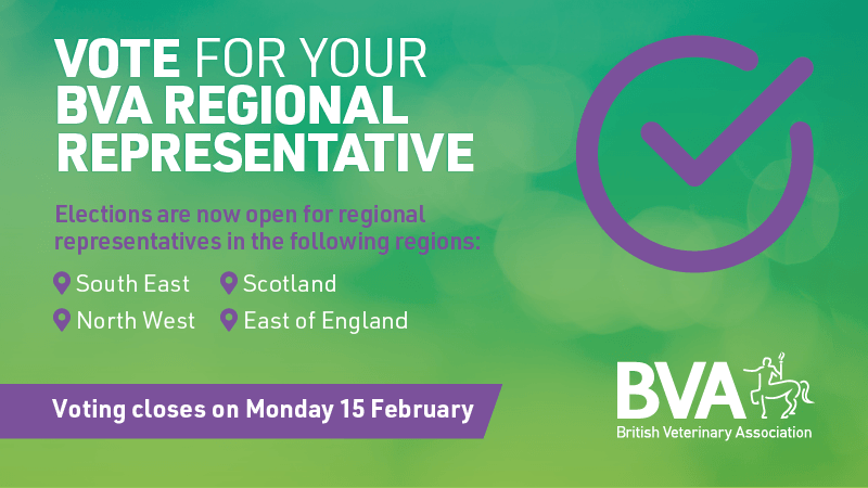 Voting for four new BVA regional representatives opens  Image